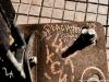 danish_graffiti_DSC_9331