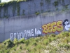 danish_graffiti_DSC_2672