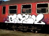 danish_graffiti_steel_PICT0fdd18