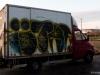 danish_graffiti_non-legall1100102