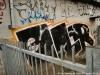 danish_graffiti_non-legal_dsc_7372