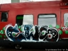 danish_graffiti_steel_dsc_2834