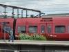 dansk_graffiti_DSC_4589