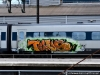 danish_graffiti_dsb-tog_dsc_9339