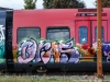 dansk_graffiti_s-tog_dsc_9613