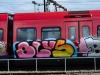 dansk_graffiti_s-tog_dsc_9633