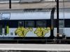 dansk_graffiti_tog_dsc_8442