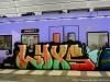 svesk_graffiti_c2dsc_0949