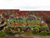 d2travels_graffiti_iceland-img_2833