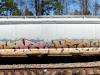 texas_freight_graffiti_4472615730_3c78ddc2c6_o