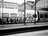 danish_graffiti_steel_img_0022-jan8