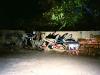 brazil_2010_graffiti_brazilimg_0034